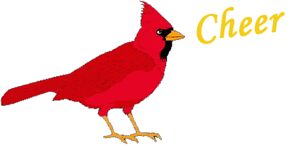 Cardinal Superstitions